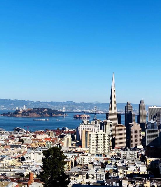 1333 Jones Street 1202, San Francisco, CA 94109