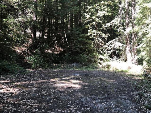 0 Old Logging, Outside Area (Inside Ca), CA 95006