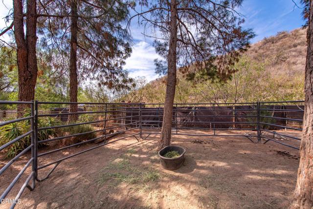 31045 Romero Canyon Rd Castaic-64