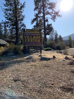 2005 Freeman Drive, Pine Mtn Club, CA 93222