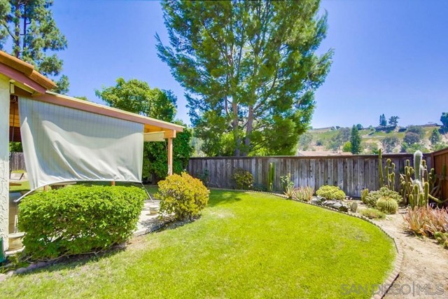 Lush and green backyard!