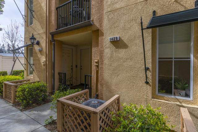 1428 Alegria Loop, San Jose, CA 95128