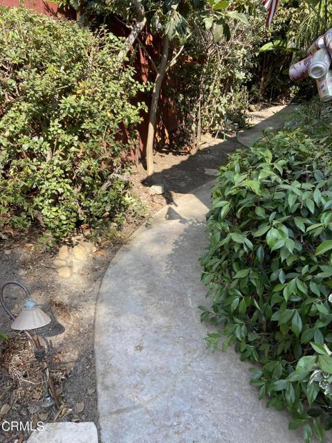 1513 Backyard 2