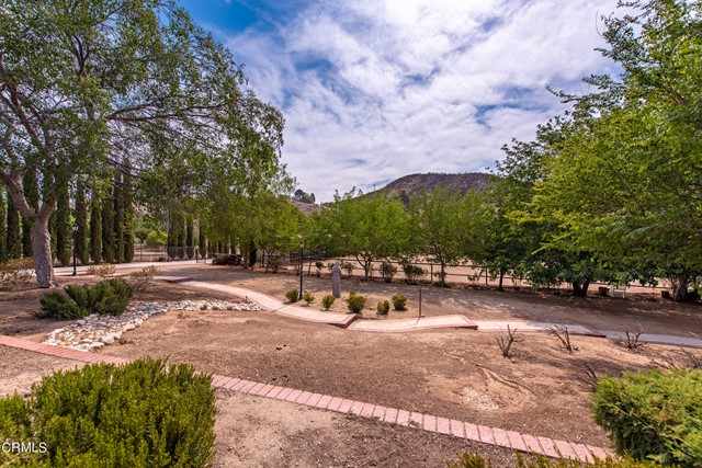 31045 Romero Canyon Rd Castaic-67