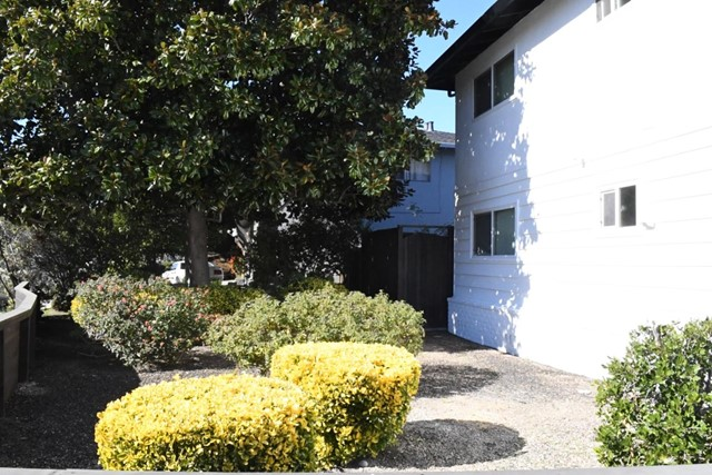 1806 Higdon Avenue 2, Mountain View, CA 94041