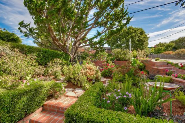 3525 Hillcrest Drive, Belmont, CA 94002