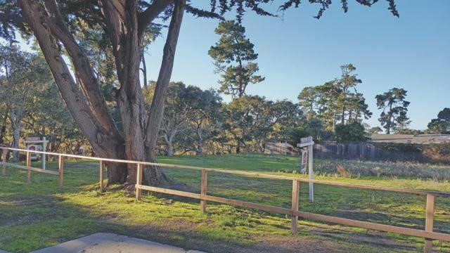 1334 Shafter Avenue, Pacific Grove, CA 93950