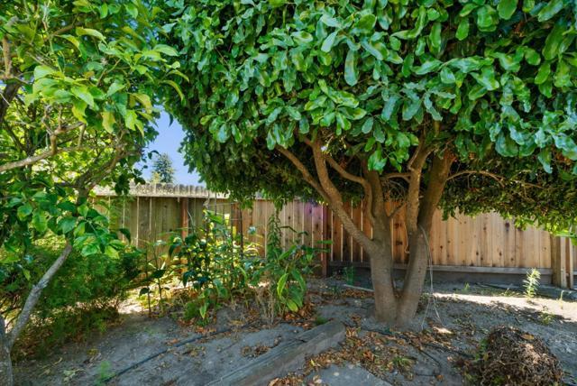 28. 929 Bay Street Santa Cruz, CA 95060