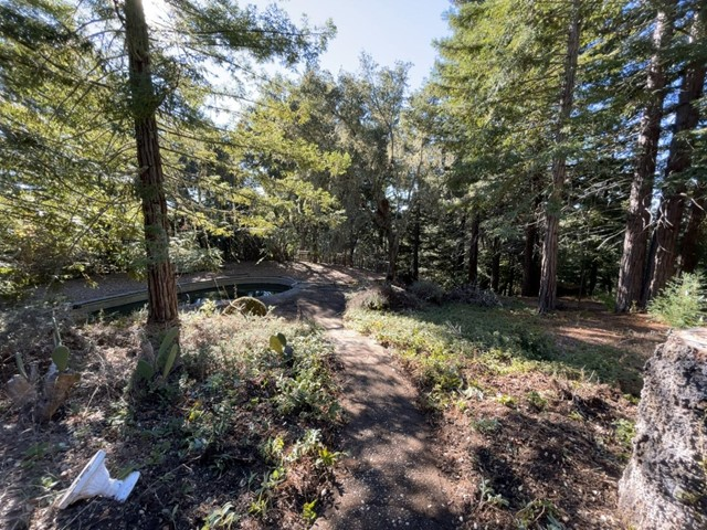 22555 Hwy 9, Outside Area (Inside Ca), California 94060, 3 Bedrooms Bedrooms, ,2 BathroomsBathrooms,Single Family Residence,For Sale,Hwy 9,ML81819590