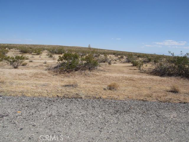 0  20 Mule Team Road