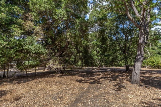 231241 Georgia Lane, Portola Valley, CA 94028