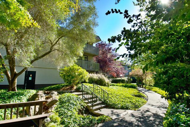 7159 Shelter Creek Lane, San Bruno, CA 94066