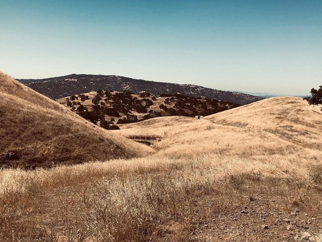 - Willow Springs, Outside Area (Inside Ca), CA 95043