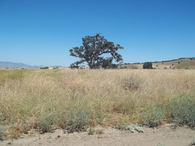 Banducci Road, Tehachapi, CA 93561