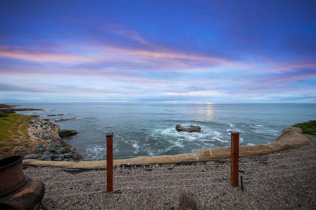 1466 Pescadero Dr, San Diego, CA 92107