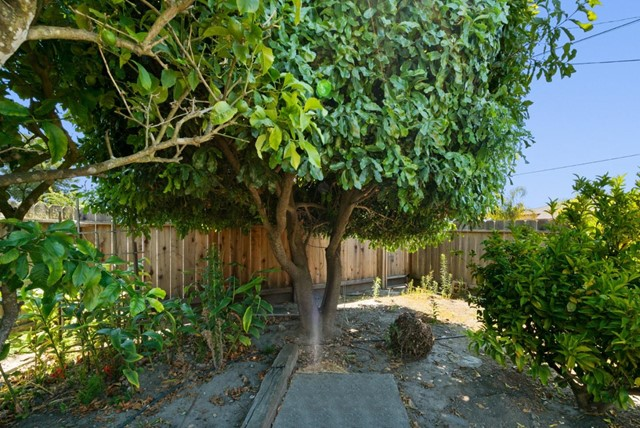 27. 929 Bay Street Santa Cruz, CA 95060