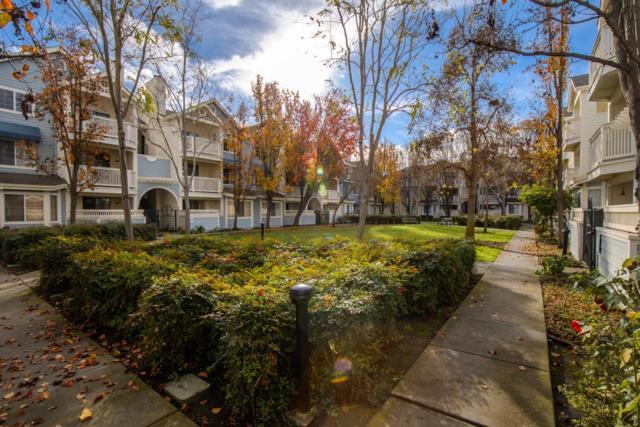 606 Arcadia Terrace 202, Sunnyvale, CA 94085