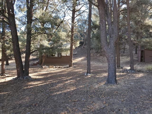 7 Frazier Mountain Rd, Frazier Park, CA 93222 Photo 11