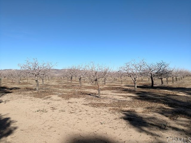 42797 Navajo Avenue, Newberry Springs, CA 92365