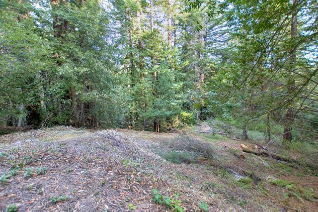 0 Vine Hill Road, Santa Cruz, CA 95065