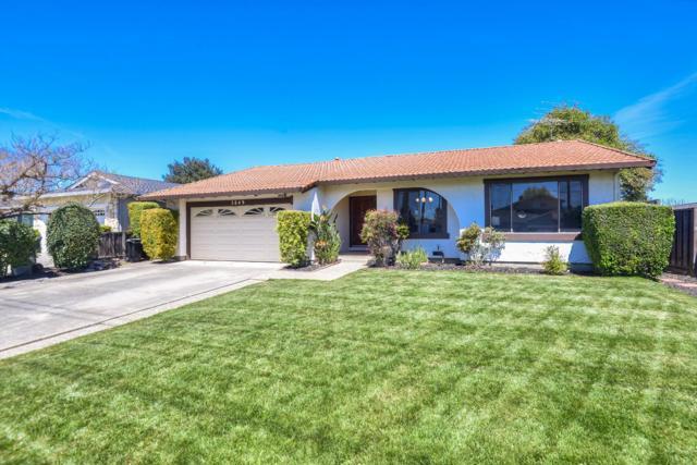 3849 Payne Avenue, San Jose, CA 95117