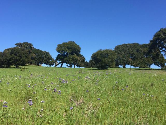8315 Vista Monterra, Lot 147, Monterey, CA 93940