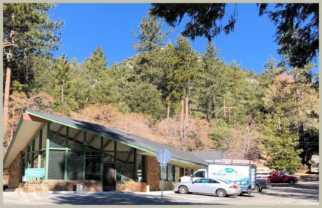 54690 Pine Crest Avenue, Idyllwild, CA 92549
