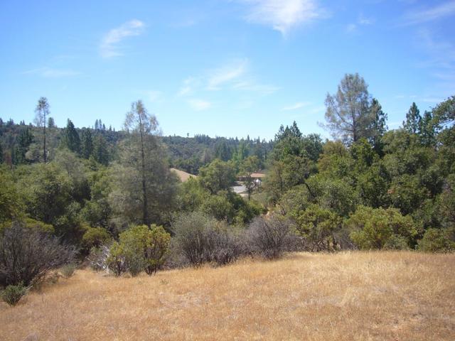 0 Soulsbyville Road, Outside Area (Inside Ca), CA 95372
