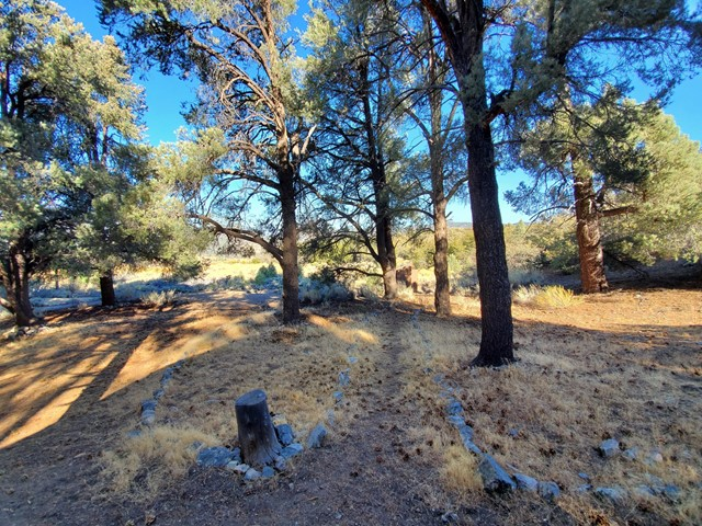 7 Frazier Mountain Rd, Frazier Park, CA 93222 Photo 10