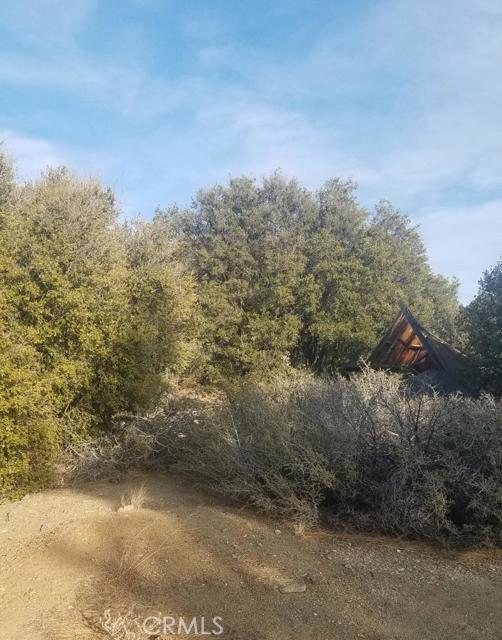 0 ** Double Mtn ** West side, Tehachapi, CA 93561