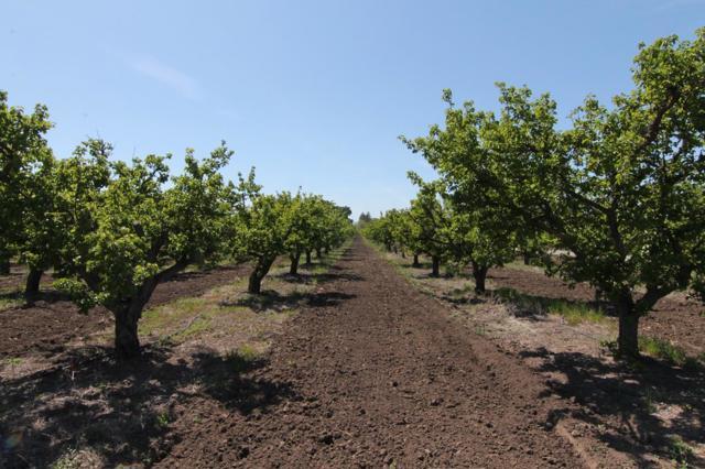 0 Rosa Morada Road, Hollister, CA 95023