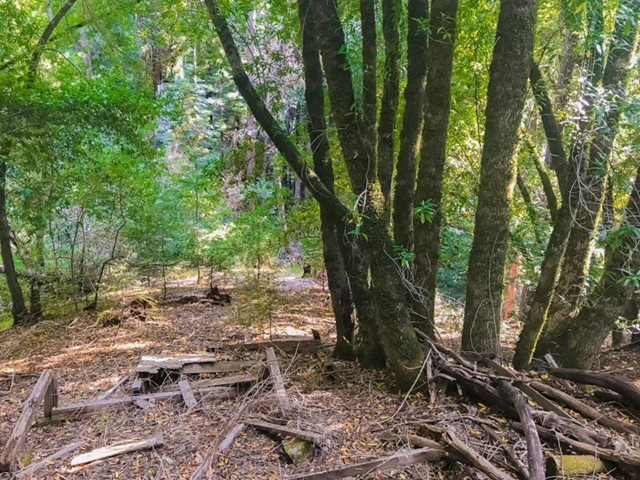 12 Logan Creek Road, Outside Area (Inside Ca), CA 95006