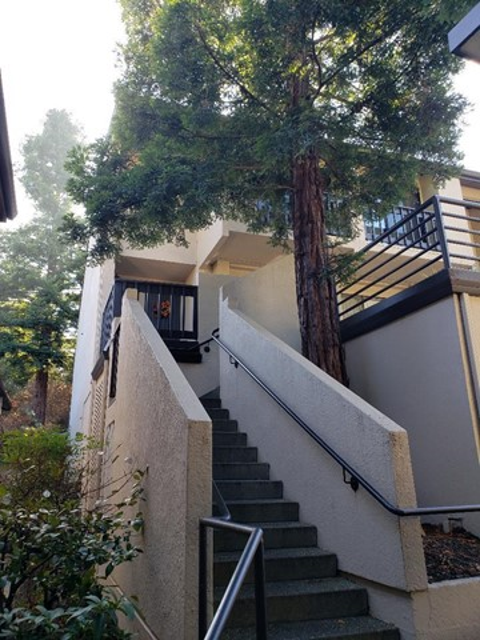 2345 Ticonderoga Drive, San Mateo, CA 94402