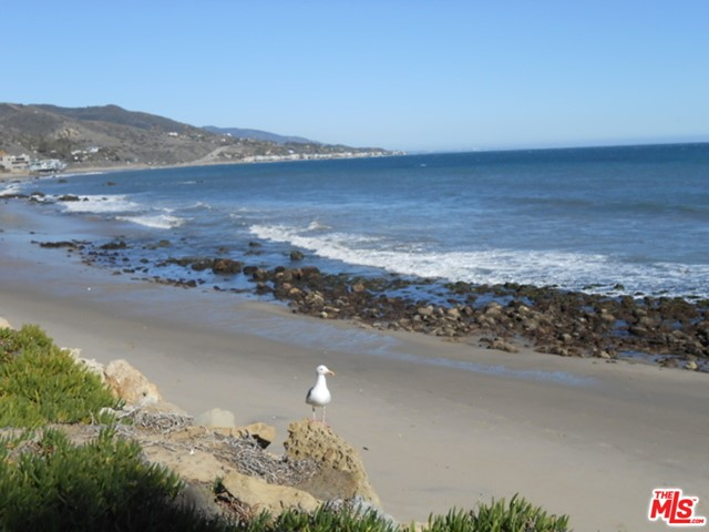 26665 Seagull Wy, Malibu, CA 90265 Photo