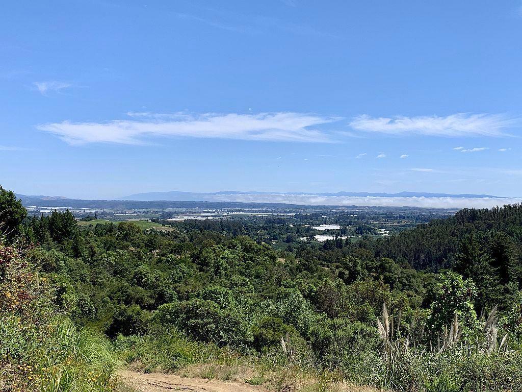 16  Apple Valley