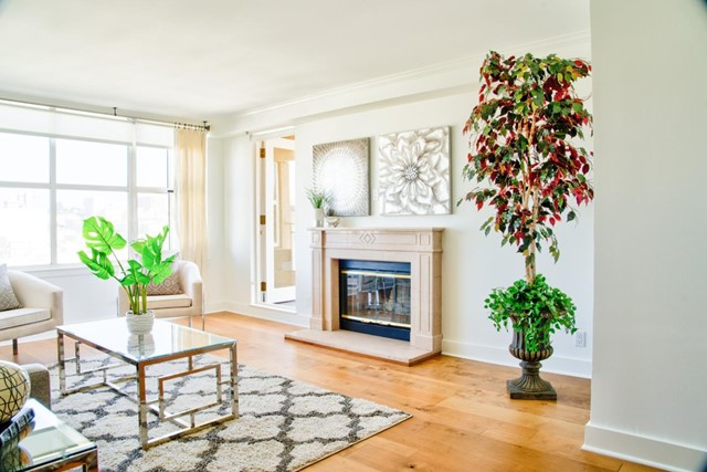 1650 Jackson Street 708, San Francisco, CA 94109